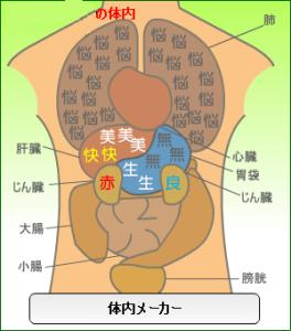 体内イメージ